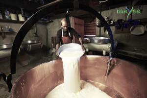 закваски молочные купить
